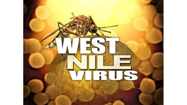 First human case of West Nile virus reported in Colorado for 2017