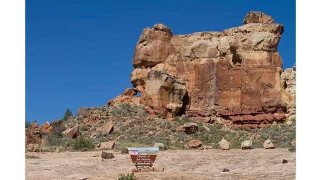 Colorado congressmen urge President Trump to protect Canyons of the Ancients National Monument