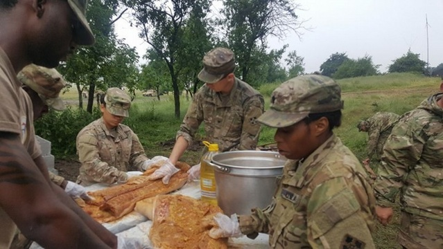 PHOTOS: Fort Carson soldiers celebrate Independence Day in Romania