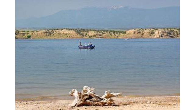 Public invited to gather free firewood from shores of Lake Pueblo State Park