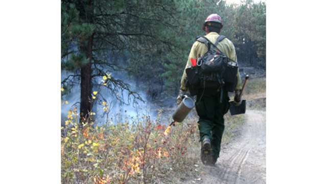 Temporary USFS jobs open soon for southern Colorado fire season