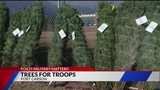Trees for Troops donates Christmas trees to military families