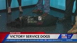 Victory Service Dogs hopes to expand throughout Colorado