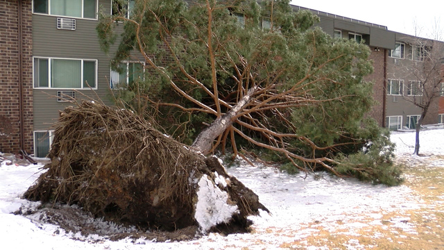 Bomb cyclone wind gust blows away previous record at Colorado Springs Airport