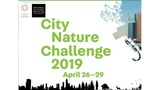 Join Colorado Springs in the City Nature Challenge