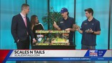 Scales 'N Tails on FOX21 Morning News